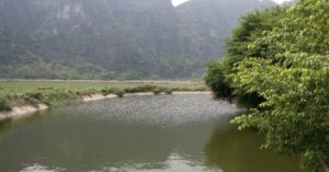 12-wild-nature-in-ninh-binh-homestay