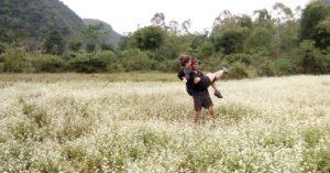 54-flower-field